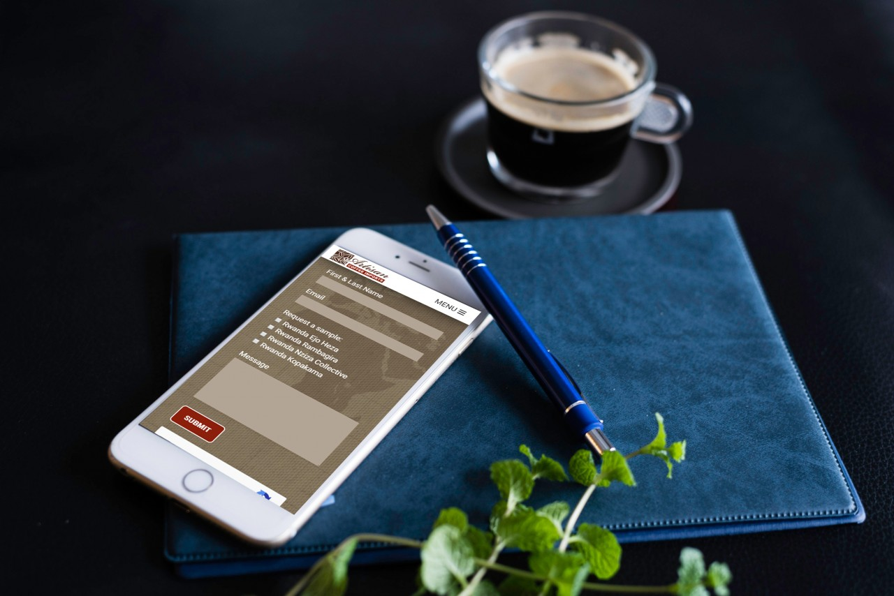 drupal custom website
