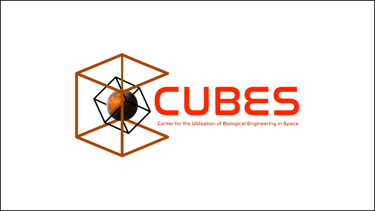 cubes logo before mars biology space
