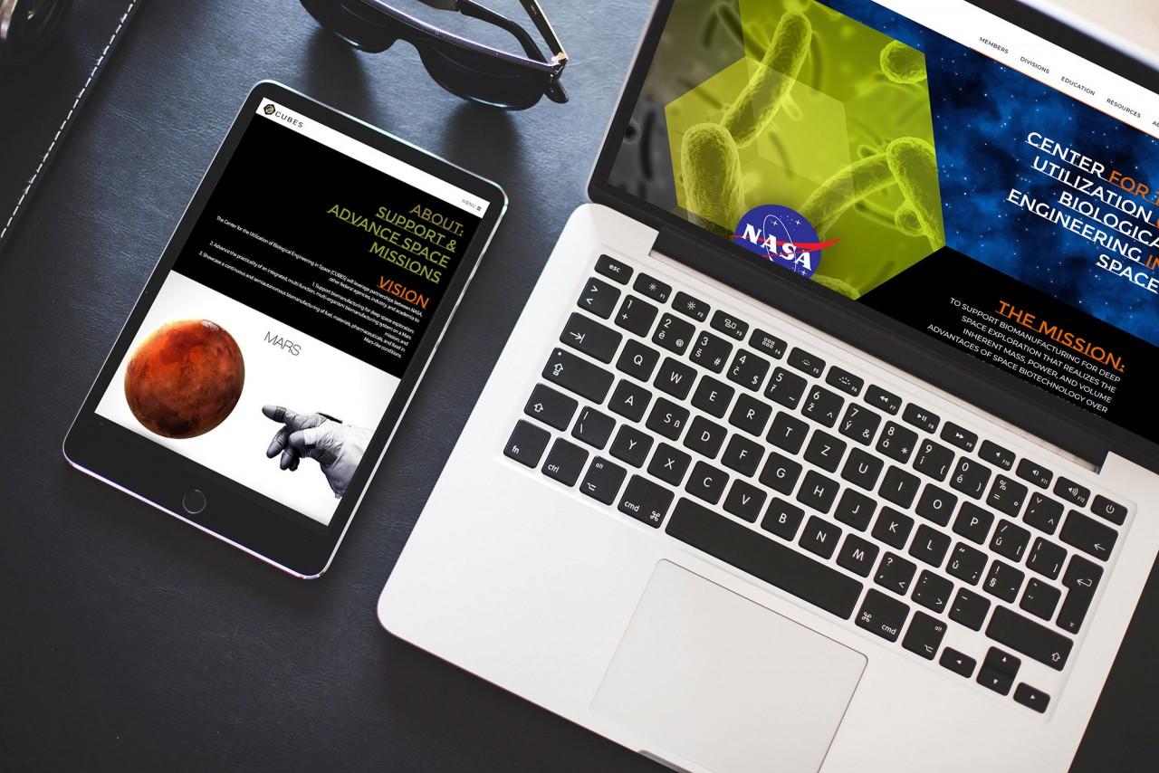monte responsive website design development