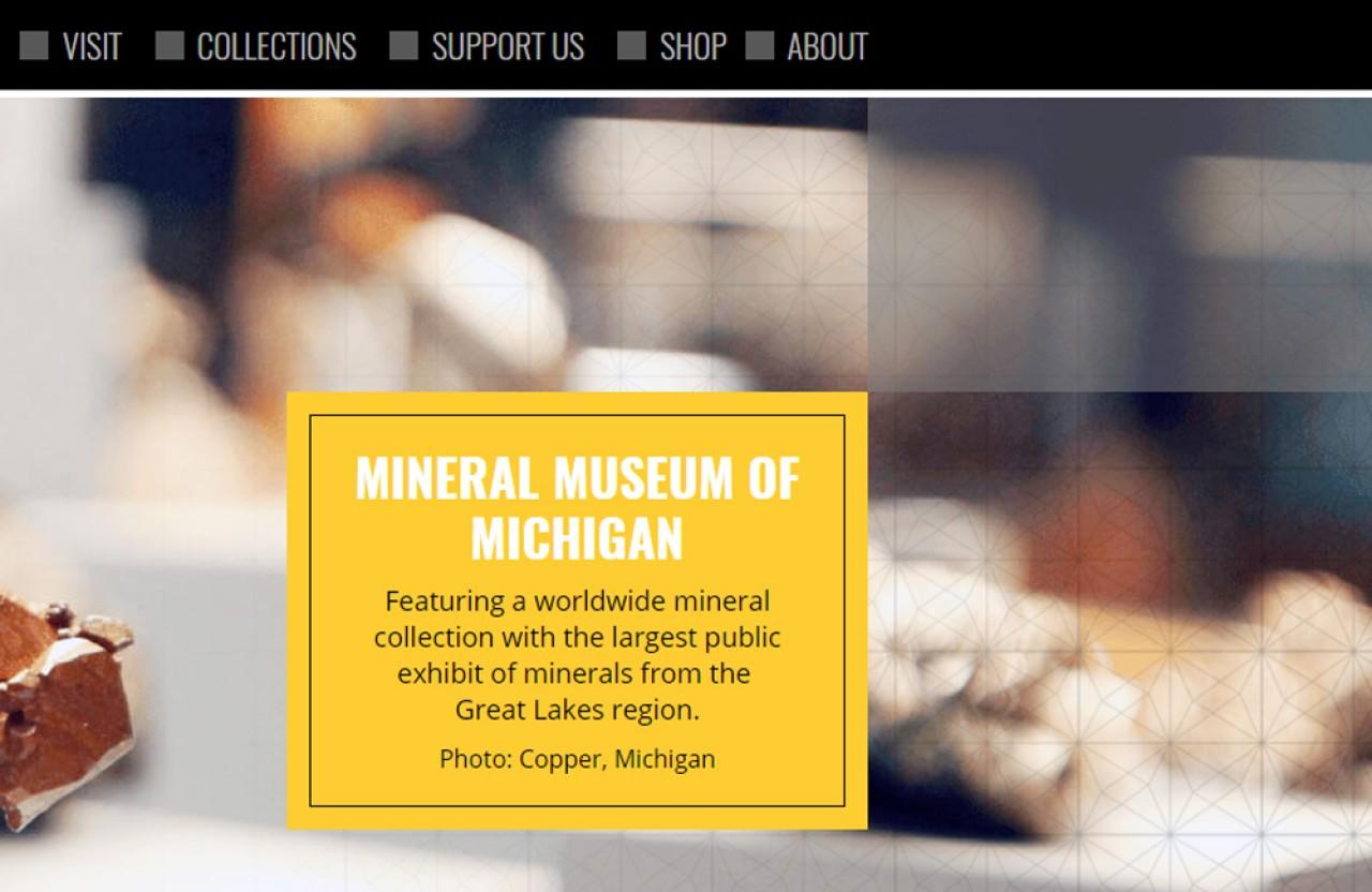 michigan website services